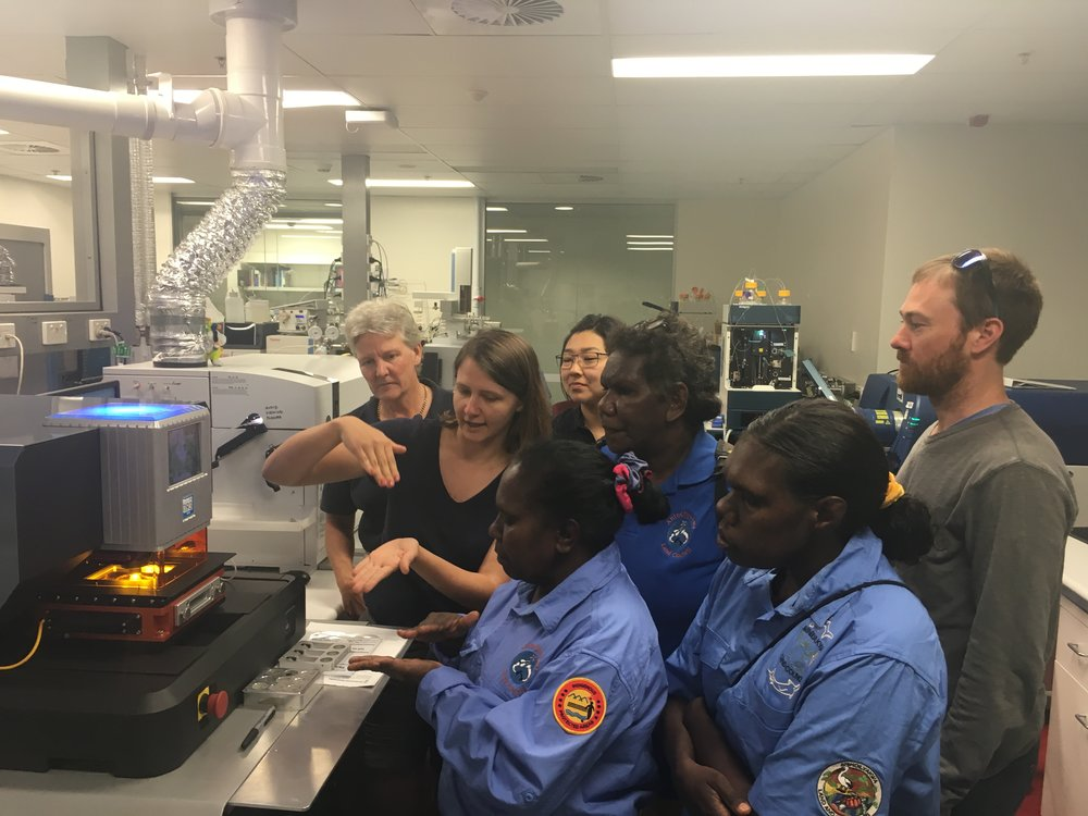 Photo: Kaylah Del Simone explains how the cutting-edge laser technology is used to analyse hair samples from Grootein thelab at the Central Analytical Research Facility at QUT.Pictured from left Charlotte Allen, Kaylah Del Simone, Jocelyn Yantarrgna,Karine Moromizato,Catherine Mamarika, Cassandra Mamarika &Andrew Hunter.