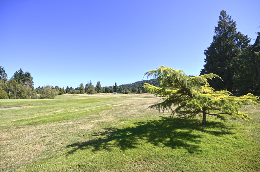 golfcourse_upperlantzville_nanaimo.jpg