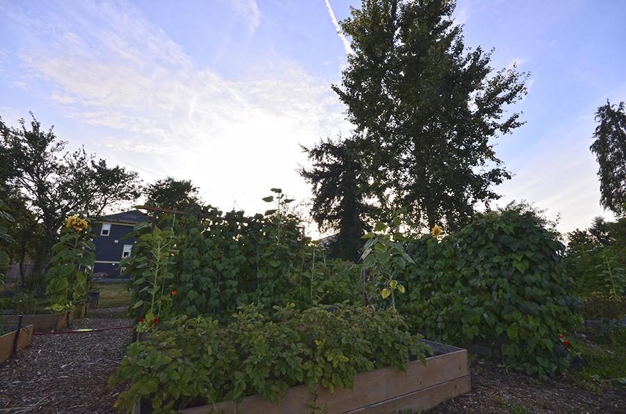 garden_southnanaimo_nanaimo.jpg