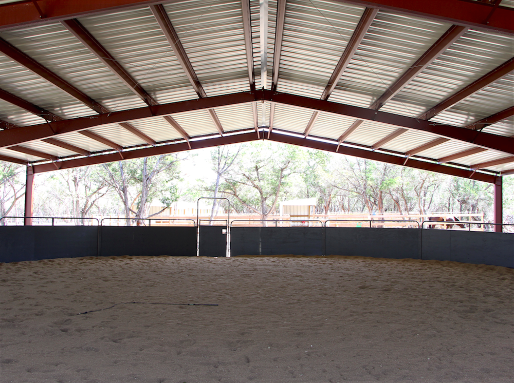 Horse boarding in Austin Texas | Coraggio Equestrian | Where to board your horse in Austin