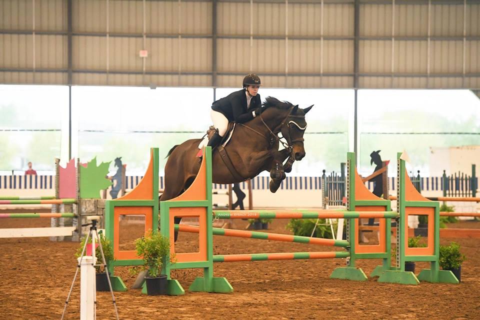 Horse show barn in Austin Texas | Coraggio Equestrian