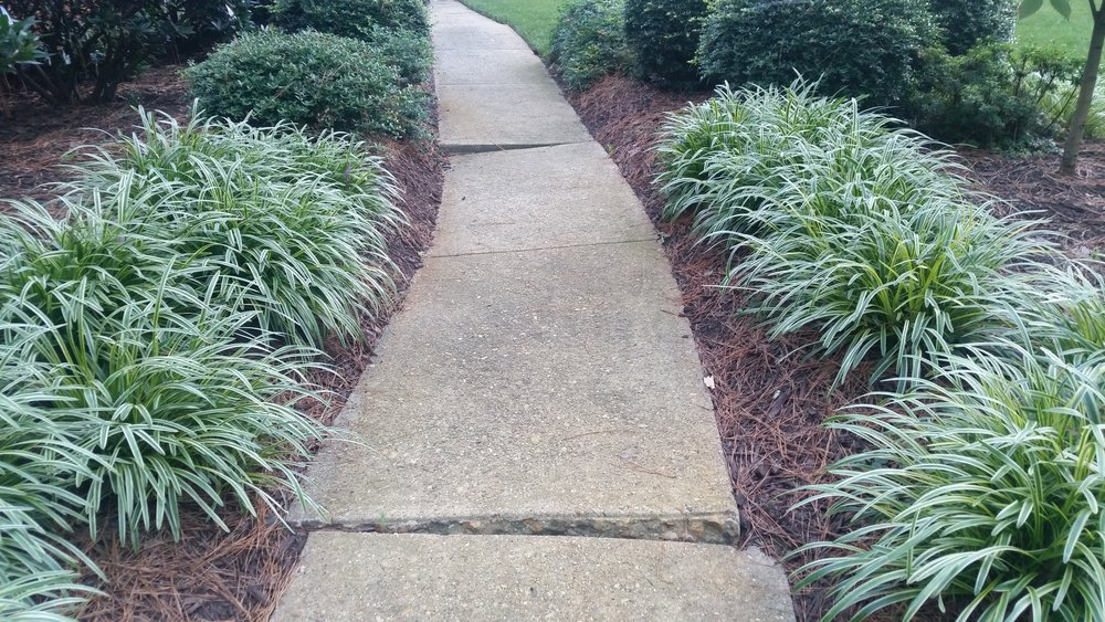 unsafe_uneven_sidewalk.jpg
