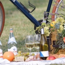 Basket & Bike - $20 Discount on Bike Excursion or Rental for up to two people; 10% Off purchase at Basket & Bike Shop online or at Carytown Collective.Use Code: RVAX2018