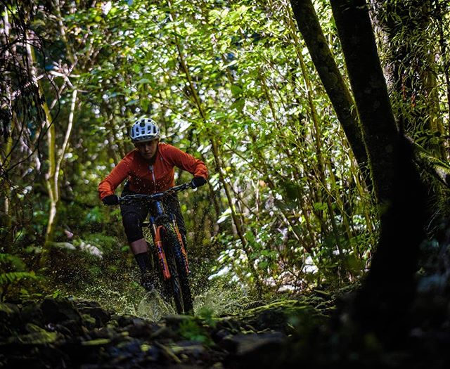 @bex_baraona and I went and explored supplejack after the rain last weekend. I had planned to shoot the rock garden  section with water running through it but it has changed so much with the rain that it was too sketchy to ride properly and we gave up and went somewhere else. I got this before we moved on though.  #nelsonnz #nelsonmtb #bikes #mountainbike #mountains #newzealand #sharlands #lifebehindbars #sicktrail #gooutside #optoutside #wetandwild #girlswhoshred