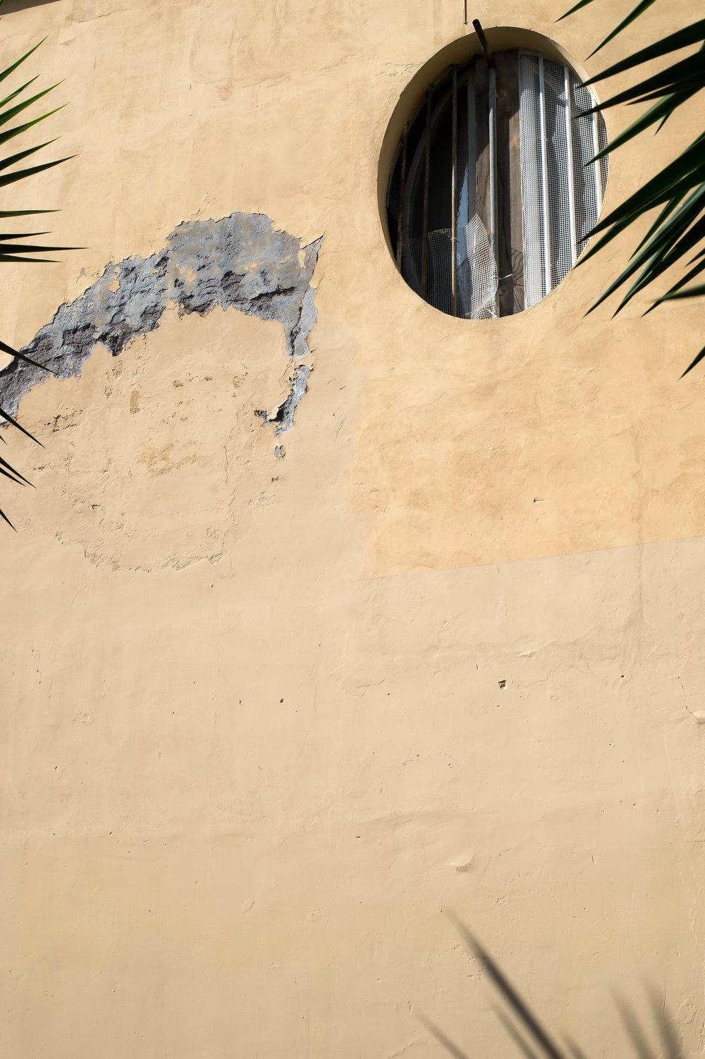 2015_09_19 roma_italia garbatella palms 1 V2.jpg