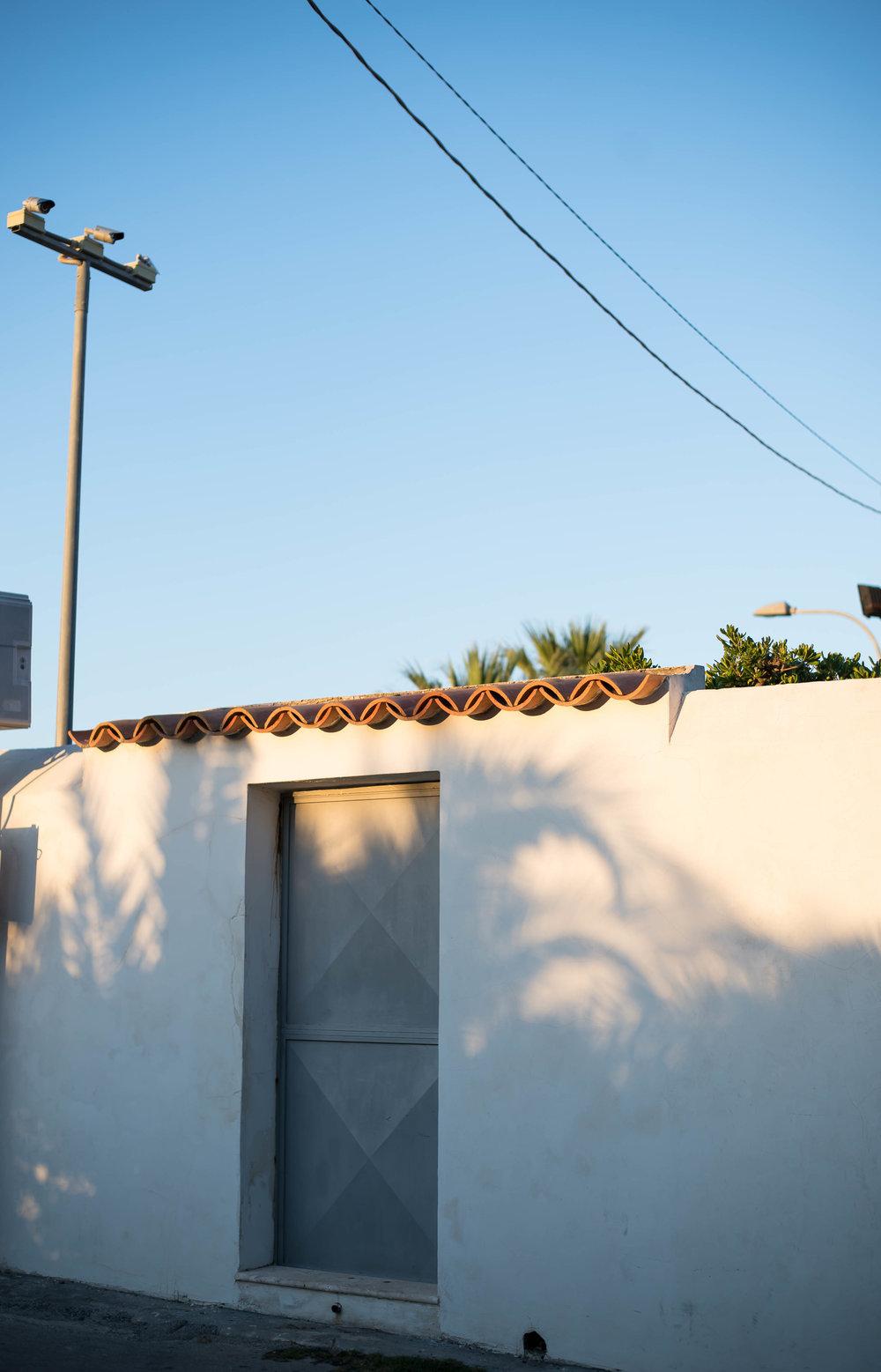 2015_09_23 brucoli_sicilia_italia palms shadows 1 V1.jpg