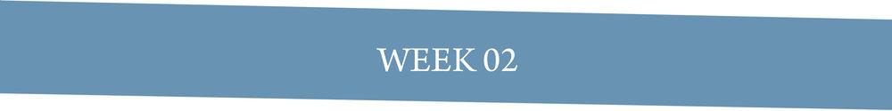 Week 02.jpg