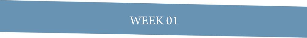 Week 01.jpg