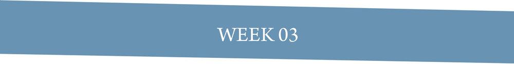 Week 03.jpg
