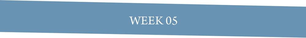 Week 05.jpg