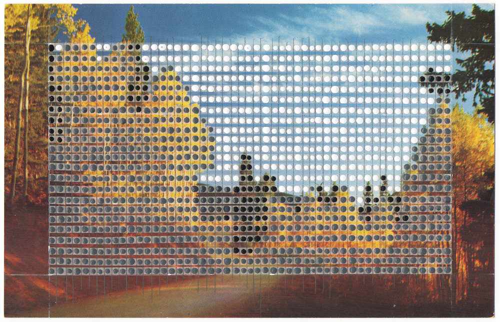Borrowed Landscapes Study No.3/New Mexico, Aspens