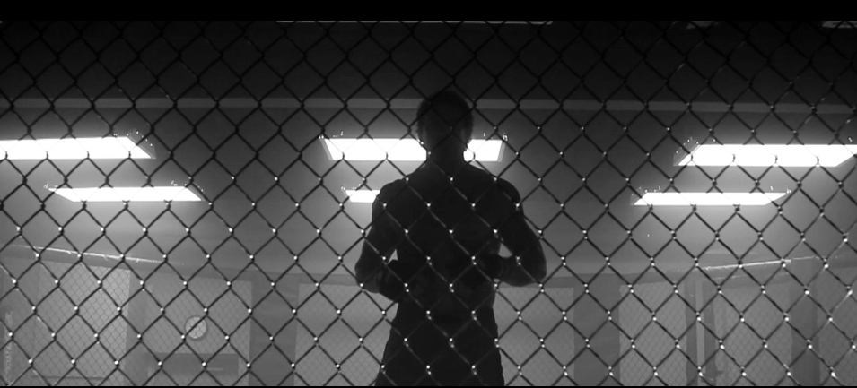 Cage Silhouette 2.jpg