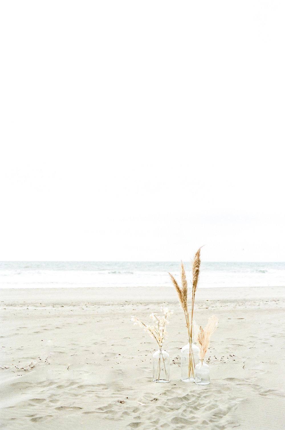Seaside_Ruins_Janine_Licare_Photography-265.jpg