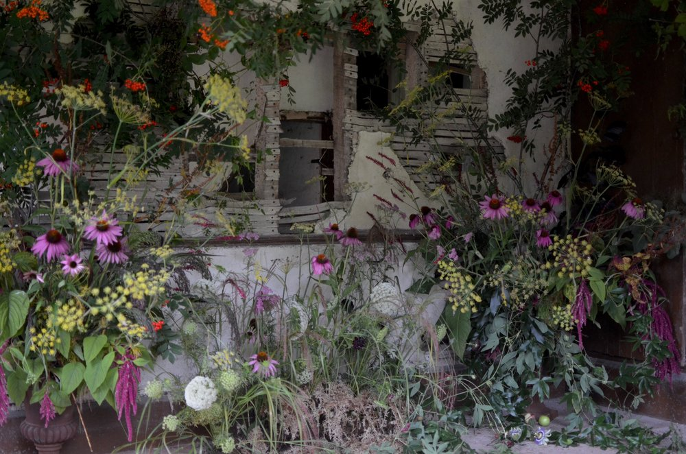 Image by Brigitte Girling