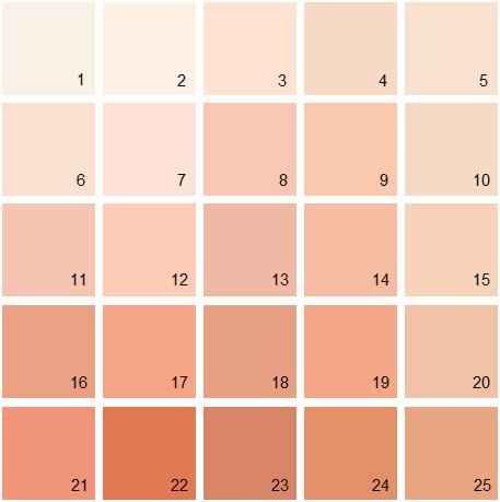 benjamin-moore-paint-colors-orange-palette-04-house-paint-colors-peach-paint-colors-designing-inspiration.jpg