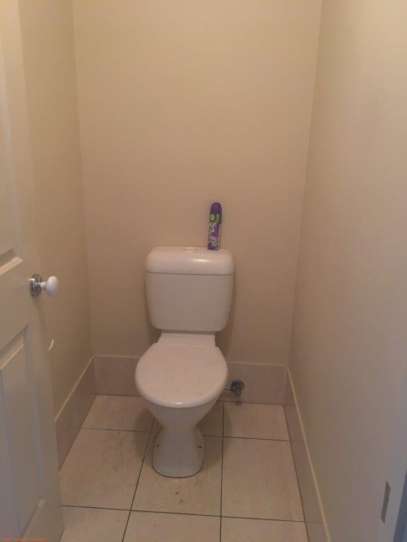 7 toilet.jpg
