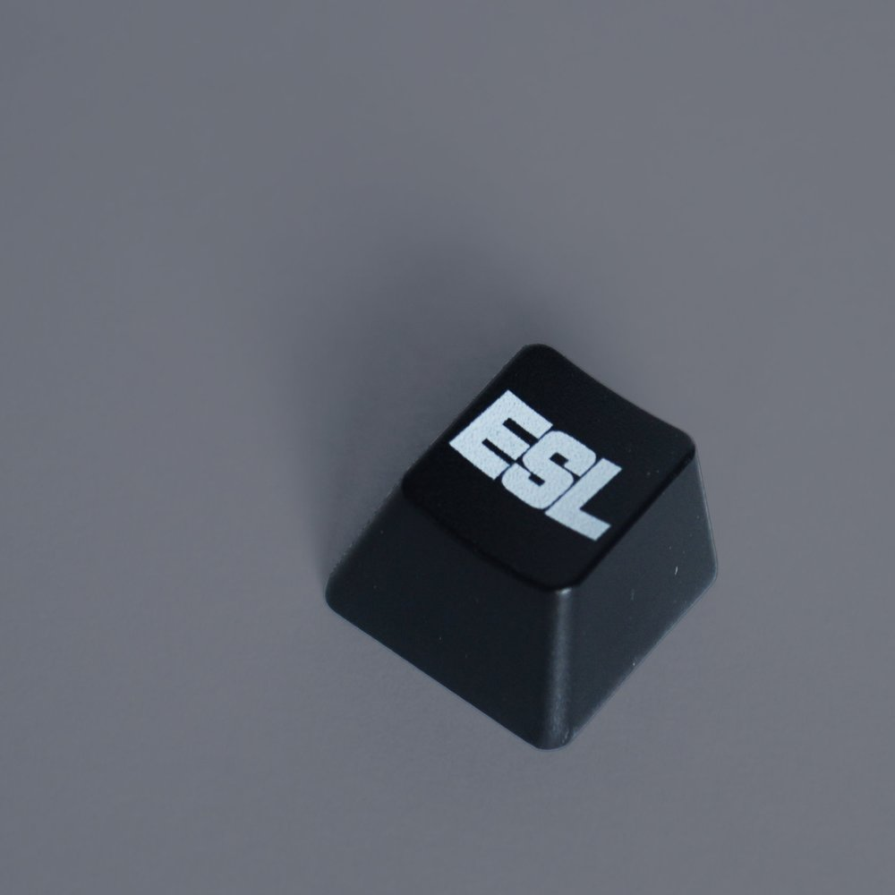 ESL key.jpg