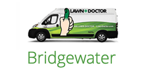 bridgewater_2019.jpg