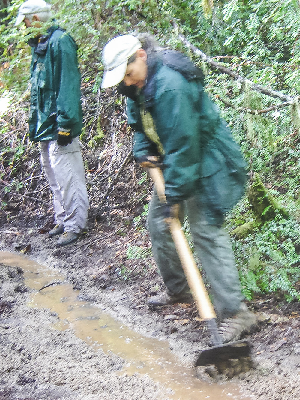 Drainage work on the Redwood Loop