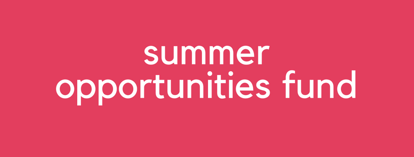 summer opportunities fund website pink.jpg