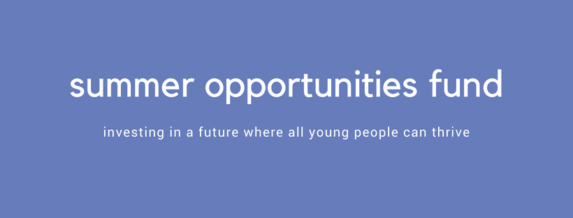 summer opportunities fund website banner.png