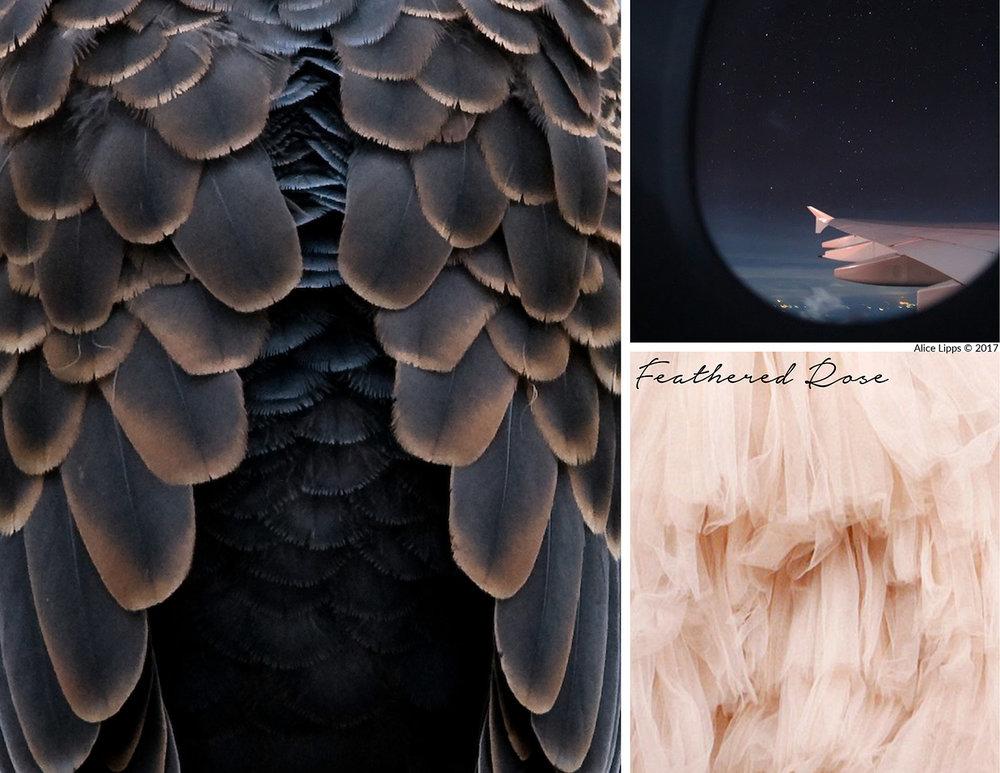 Bird_Feathered_Rose_Inspiration_Board.jpg