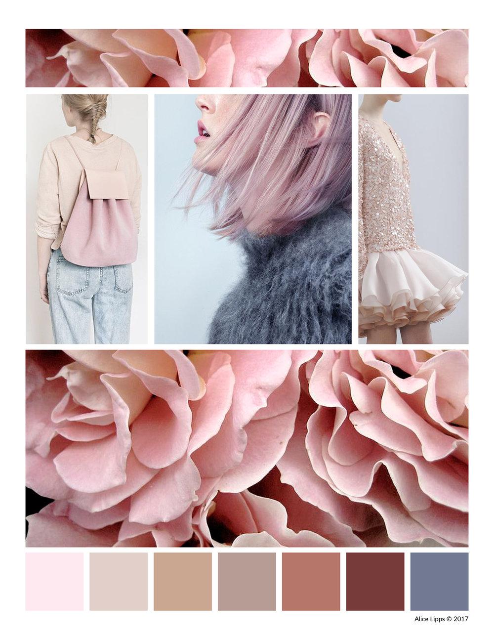 Rose_Color_Story.jpg