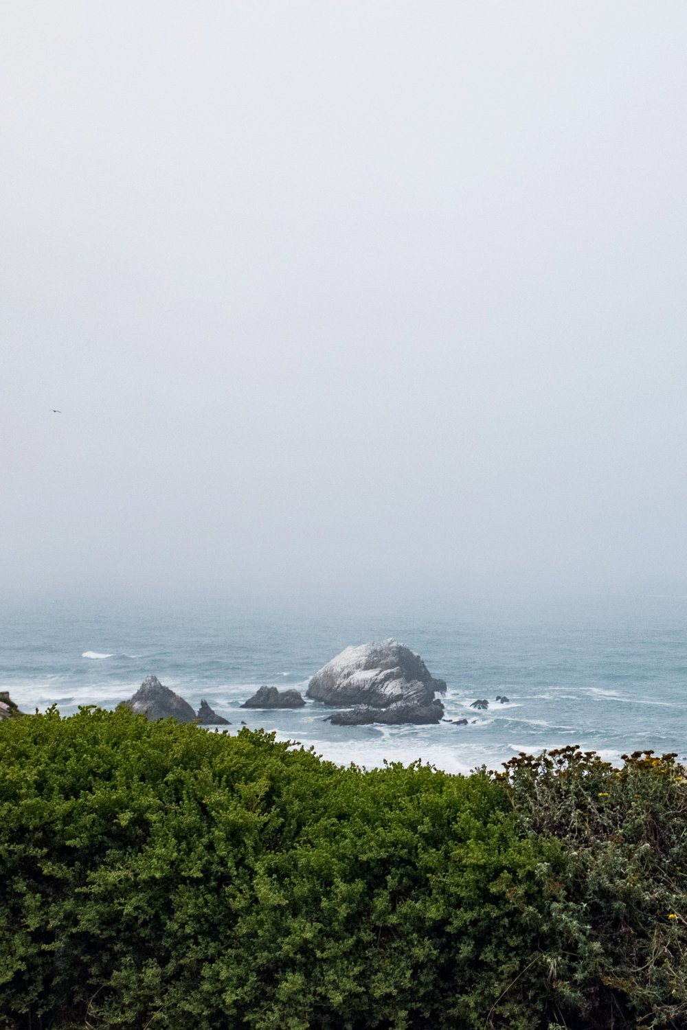 Foggy coastal views never get old