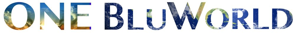 blueworld logo.jpg