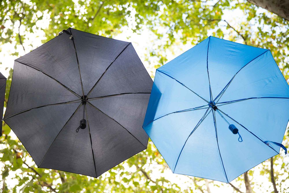 About-The-Festival---Umbrellas.jpg