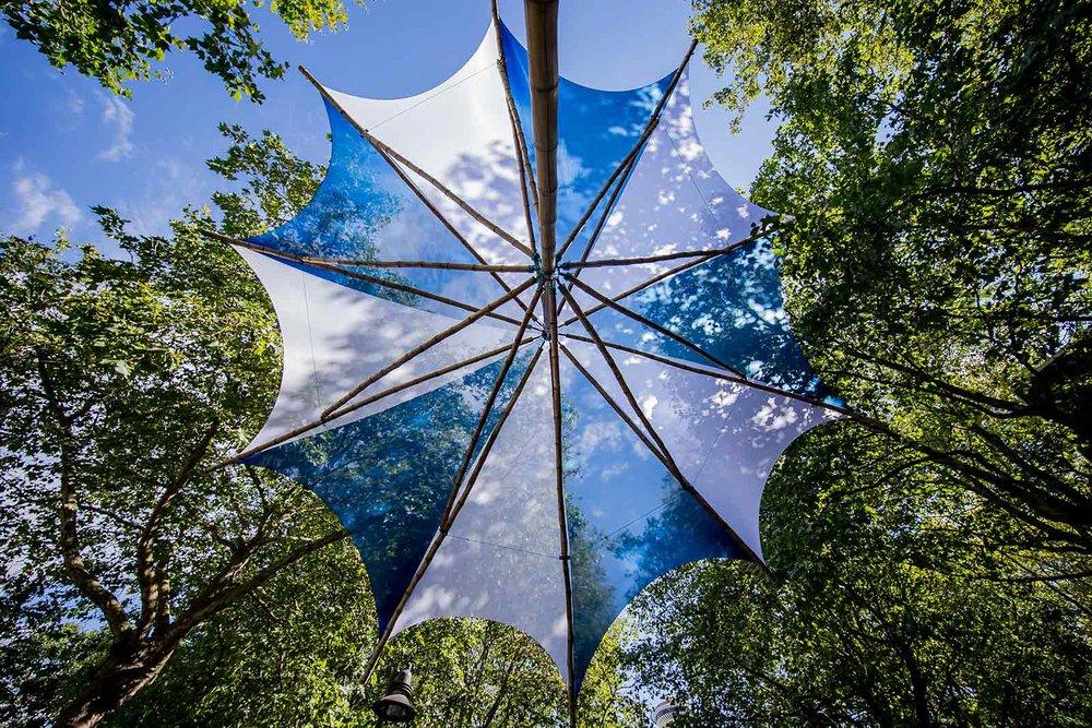 Sustainability---image-3.jpg