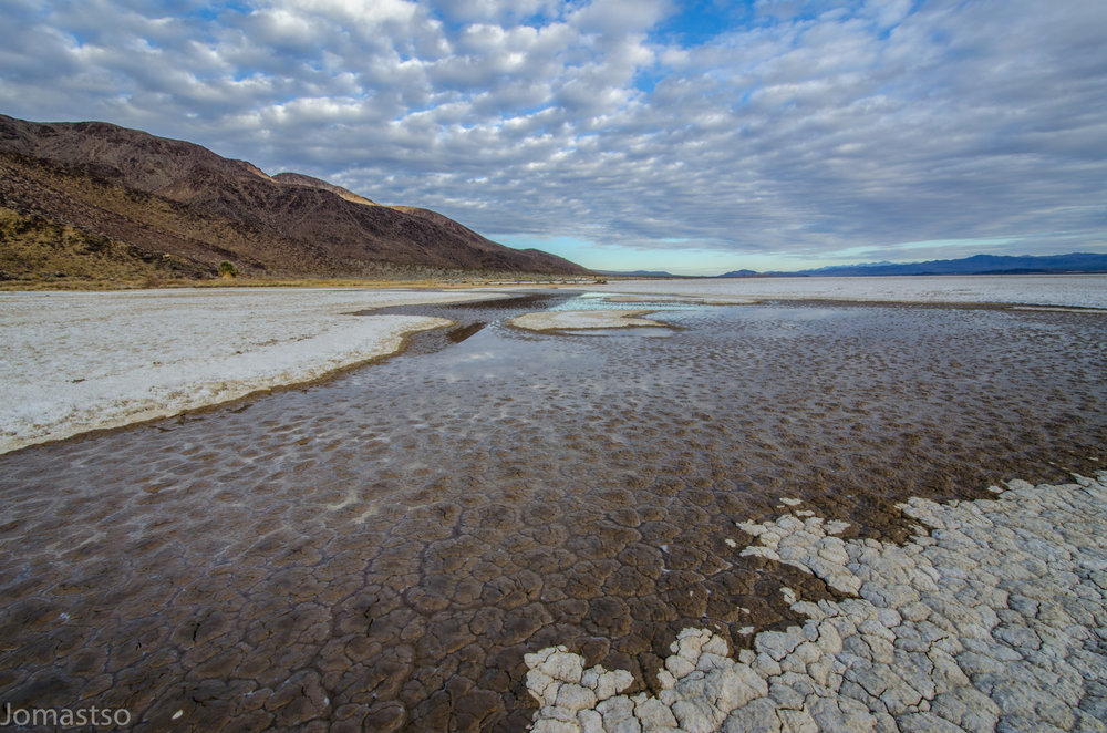 Water Briefly Returns to the Playa After a Winter Rain