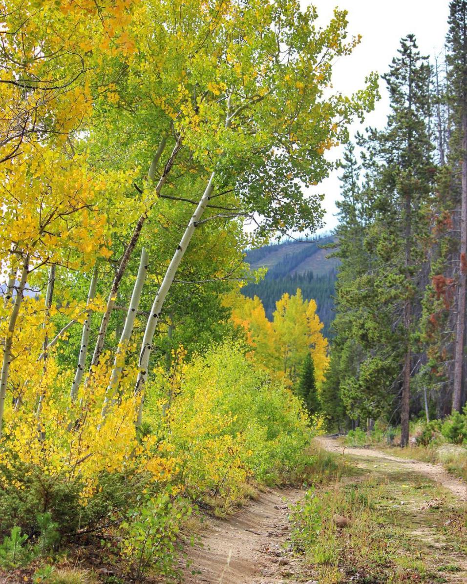 Fall Seasonal Photography