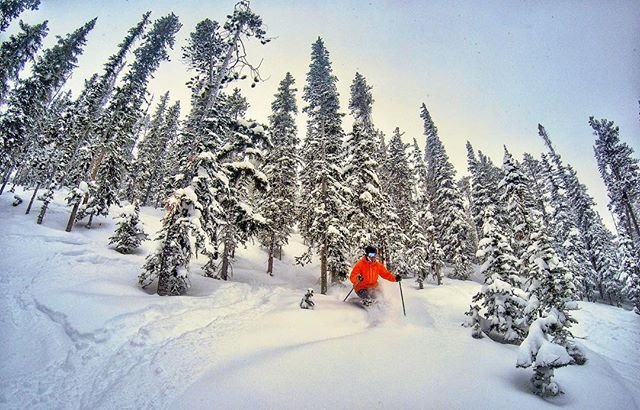 """Someone called #Colorado """"snow-starved"""" so I proved them wrong with this post for @visitgrandcounty! #fakenews #GoGrand #LocalSocialWP"""