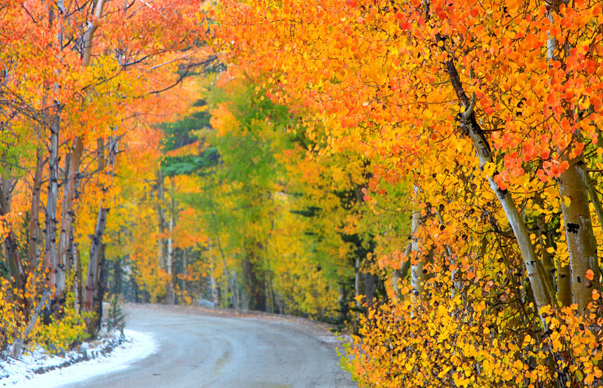 Autumn can bring light snowfall along with colorful leaves
