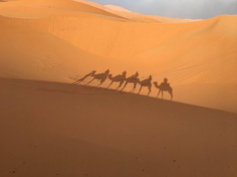 HollyDowning_Morocco.jpg
