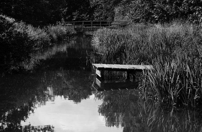 jh0275_lake.jpg