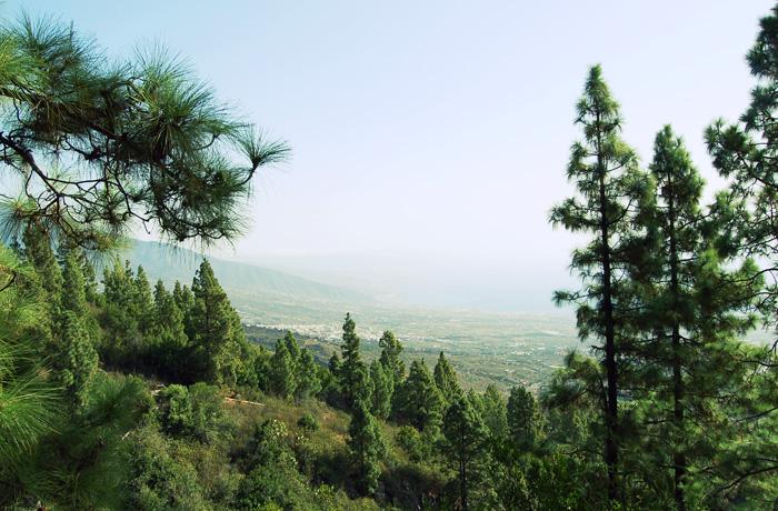 jh0388_panorama.jpg