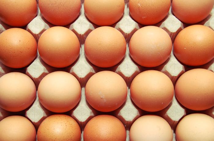 jh394_egg.jpg