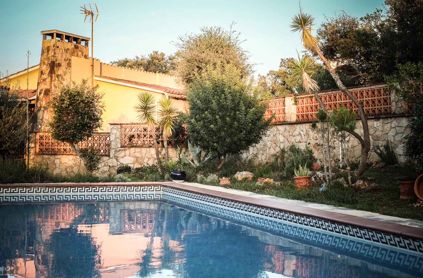 Dolphi's Pool