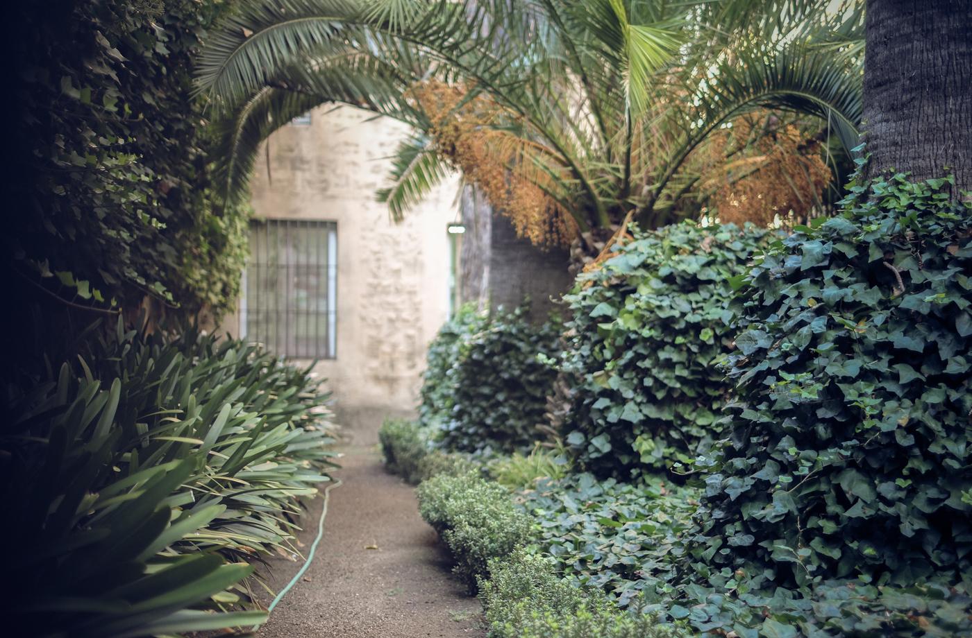 Barcelona Garden