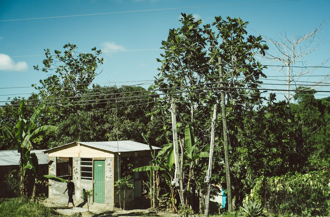 Roadside Jamaica