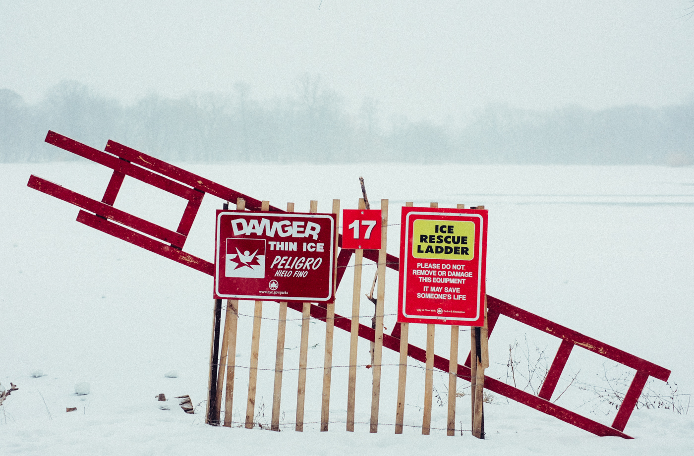 Ice Rescue Ladder