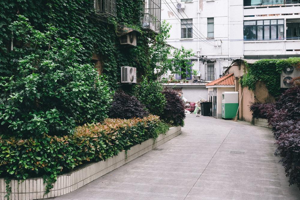 EH2004_Shanghai-Driveway.jpg