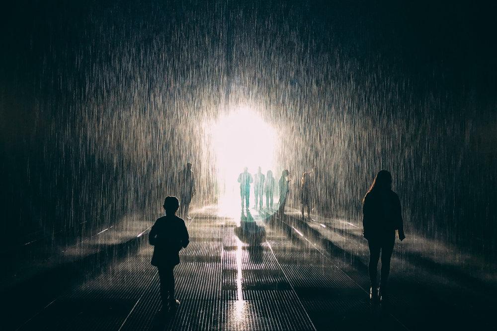 JH2220_rain-room.jpg