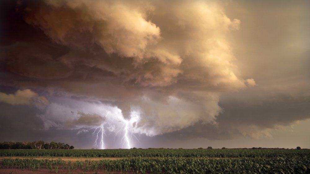 Thick bolts of lightning strike cornfields beneath a tornado-warned supercell in southern Nebraska.