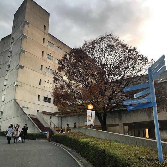 Filming at this pretty University today. 🎥  #osakauniversityofarts #osaka #documentary #japan #ichikabachikafilm