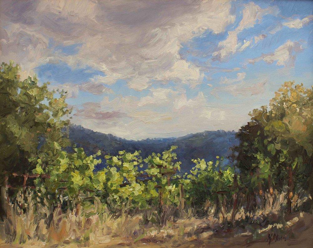 Saratoga Vineyard