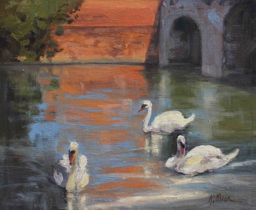 Swans, Bedford, England