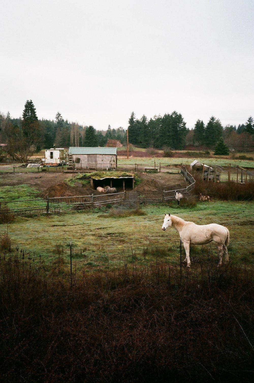 Eaglemount, Washington